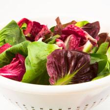 Italian Radicchio & Fennel Salad
